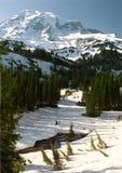 Mount Rainier 3. Mount Rainier, Mount Rainier National Park, Washington stock photos
