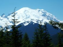 Mount Rainier Stock Images