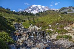 Mount Rainier, stream and alpine meadows from the Skyline Trail. Mount Rainier and alpine meadows from the Skyline Trail, a short, easy walk from the Visitor Royalty Free Stock Images
