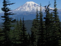 Mount Rainier from Angry Mountain Stock Image