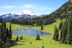 Mount Rainier as seen from Lake Tipsoo Stock Images