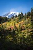 Mount Rainier in autumn Royalty Free Stock Image
