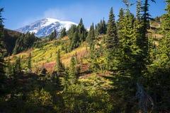 Mount Rainier in autumn Stock Image