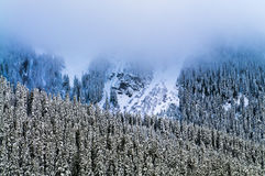Mount Rainier Covered in Thick Fog Stock Photography
