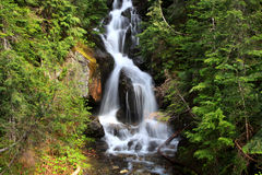 Mount Rainier falls Royalty Free Stock Images