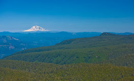 Mount Rainier and forest. Aerial view of Mount Hood National forest with snow capped peak of Mount Rainier in background, Washington and Oregon, U.S.A Stock Photos