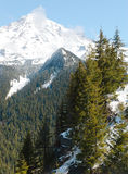Mount Rainier forests and snow Stock Photo
