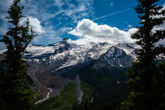 Mount Rainier. A long shot of Mount Rainier through the trees Royalty Free Stock Image