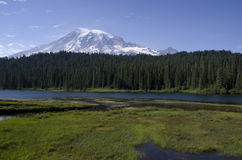 Mount Rainier Louise Lake Stock Photography