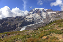 Mount Rainier. In  National Park Royalty Free Stock Photography