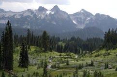 Mount Rainier National Park Royalty Free Stock Photos