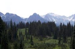Mount Rainier National Park Royalty Free Stock Photography