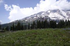 Mount Rainier National Park Stock Images