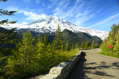 Mount Rainier national park Stock Photography