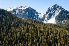 Mount Rainier National Park Royalty Free Stock Image