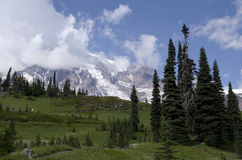 Mount Rainier National Park Royalty Free Stock Images