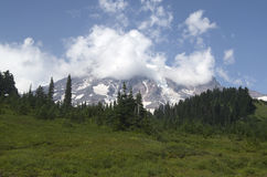 Mount Rainier National Park Stock Image