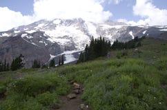 Mount Rainier National Park Stock Photography