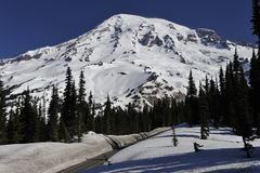 Mount Rainier, near Seattle, USA Royalty Free Stock Images