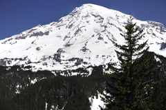 Mount Rainier near Seattle, USA Royalty Free Stock Photography