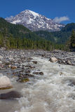 Mount Rainier and Nisqually River Royalty Free Stock Image