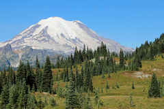 Mount Rainier NP Royalty Free Stock Photo