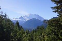Mount Rainier Royaltyfri Fotografi