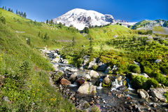 Mount Rainier at Paradise Stock Photo