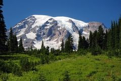 Mount Rainier, Washington, USA Royalty Free Stock Photos
