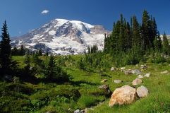 Mount Rainier, Washington, USA Stock Photos