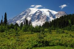 Mount Rainier, Washington, USA Royalty Free Stock Image
