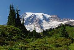 Mount Rainier, Washington, USA Royalty Free Stock Images
