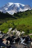 Mount Rainier, Washington, USA Stock Images