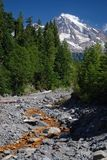 Mount Rainier, Washington, USA Stock Photos