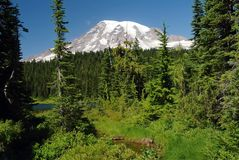 Mount Rainier, Washington, USA Stock Photography