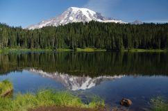 Mount Rainier, Washington, USA Royalty Free Stock Photo