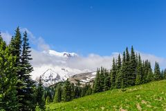 The Slopes of Mount Raineer Stock Image