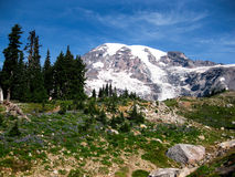 Mount Rainier Royalty Free Stock Images