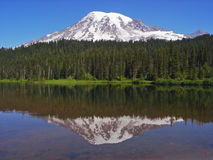 Mount Rainier Reflection. Mount Rainier reflected in the placid waters of a cedar lake, Mount Rainier National Park, Washington Stock Photos