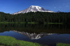 Mount Rainier Reflection Stock Image
