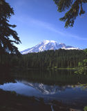 Mount Rainier & Reflection Lake. Mount Rainier reflecting in Reflection Lake royalty free stock image