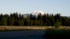 Mount rainier rising up over range with grass and forest. In pacific northwest stock video footage