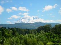 Mount Rainier. Scenic view of Mount Rainier in Washington State Stock Photo