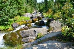 Mount Rainier, Skyline Trail Waterfall, Paradise River Stock Photography