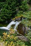 Mount Rainier, Skyline Trail Waterfall, Paradise River Stock Photo