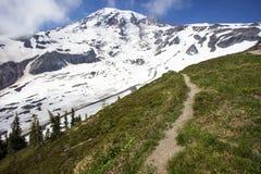 Mount Rainier som fotvandrar slingan Arkivbild