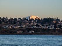 Mount Rainier som stiger ?ver linje av den bostads- backen fotografering för bildbyråer