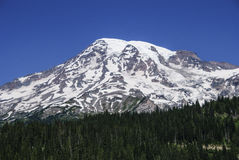 Mount Rainier southern face Royalty Free Stock Image