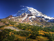 Mount Rainier and Spray Park Royalty Free Stock Photography