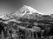 Mount Rainier and Spray Park Stock Photography